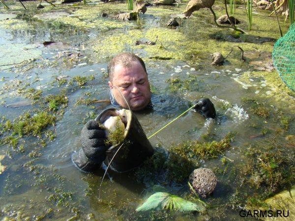 подводная ловля сомов видео