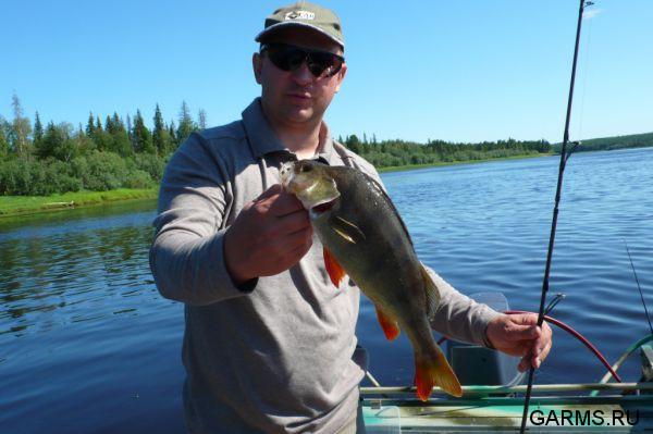 рыбалка в хмао отчеты