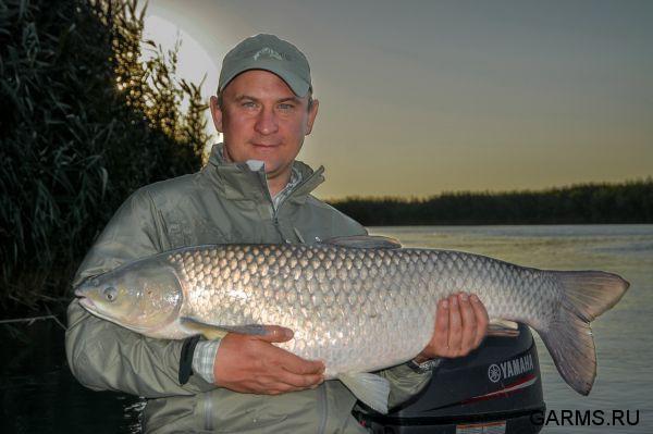 рыбалка в казахстане в августе