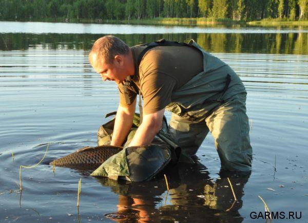 ловля сазана в челябинской области