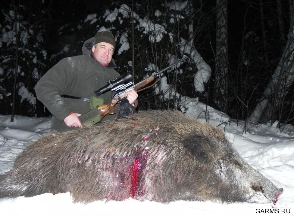 Охота на кабана www globalitv ru — смотреть онлайн видео