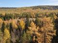 Хвойные и лиственные леса, река Уфа и горы дают великолепную возможность...